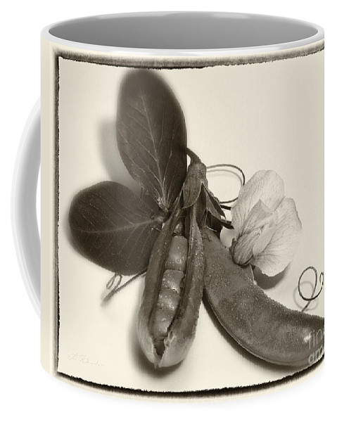Iris Holzer Richardson Coffee Mug featuring the photograph Green Peas In Pod With White Flower by Iris Richardson