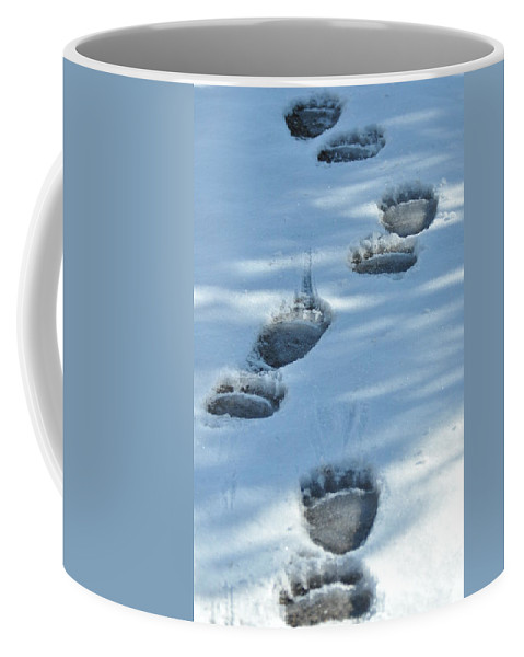 Blue Coffee Mug featuring the photograph Grizzly Bear Tracks by Frank Madia