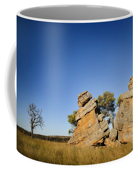 Australia Coffee Mug featuring the photograph Grown Apart by Tim Hester