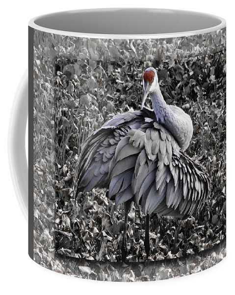 Paynes Praire Coffee Mug featuring the photograph Hi There by James Ekstrom