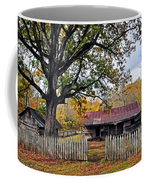 Landscape Coffee Mug featuring the photograph Homestead On The Buffalo by Marty Koch