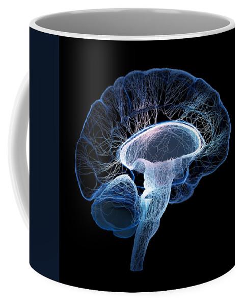 Brain Coffee Mug featuring the photograph Human Brain Complexity by Johan Swanepoel