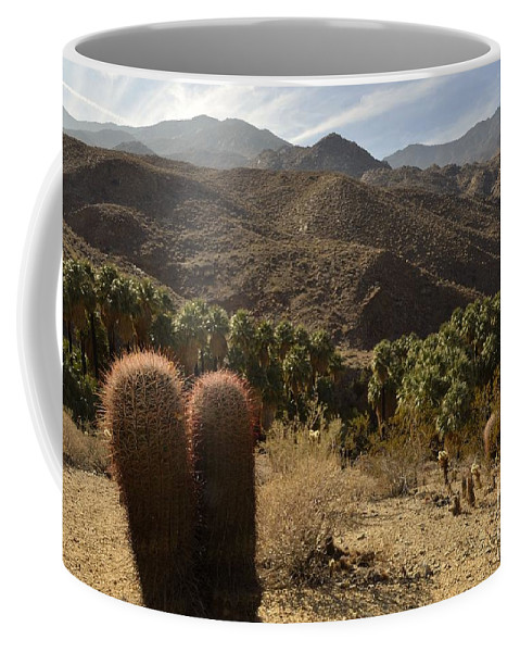 Indian Canyons Coffee Mug featuring the photograph Indian Canyons by Yinguo Huang