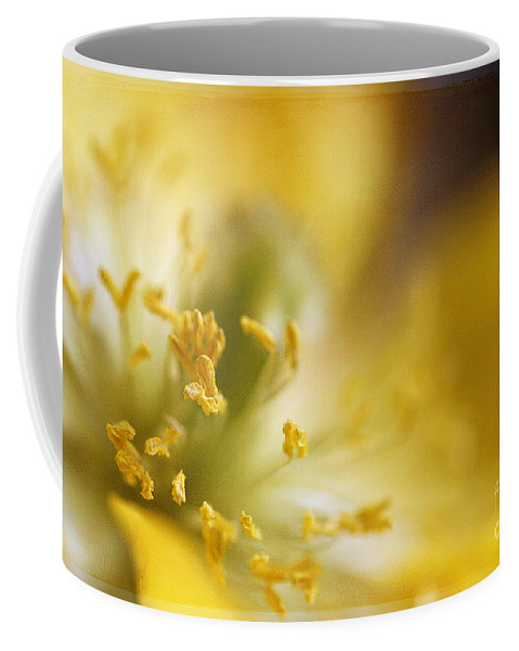Painterly Coffee Mug featuring the photograph Inside The Poppy by Darren Fisher