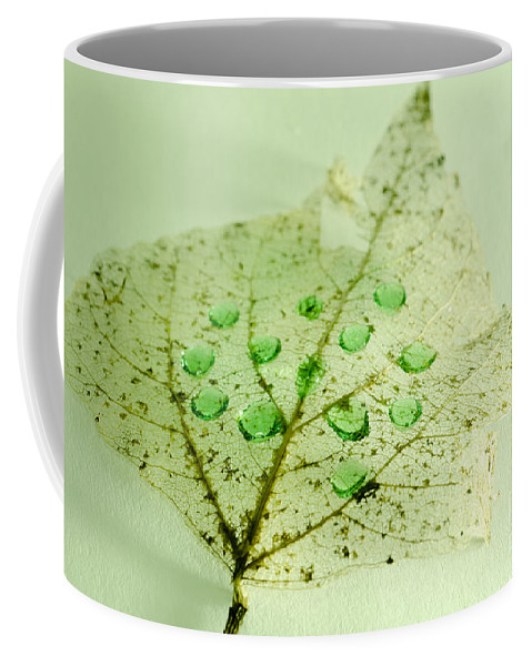 Leaf Coffee Mug featuring the photograph Leaf With Green Drops by Mats Silvan