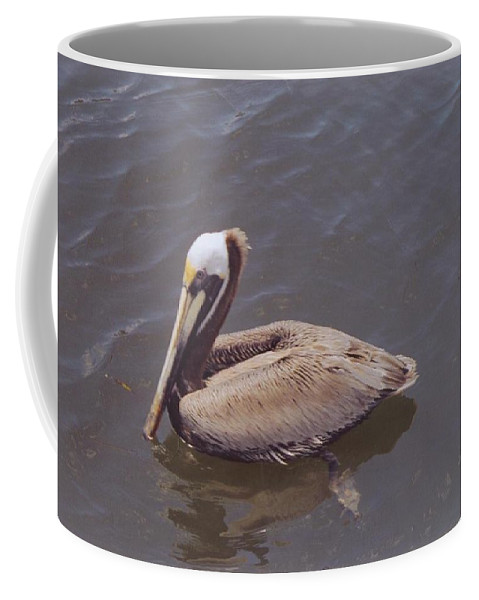 Matlacha Coffee Mug featuring the photograph Male Pelican by Robert Floyd