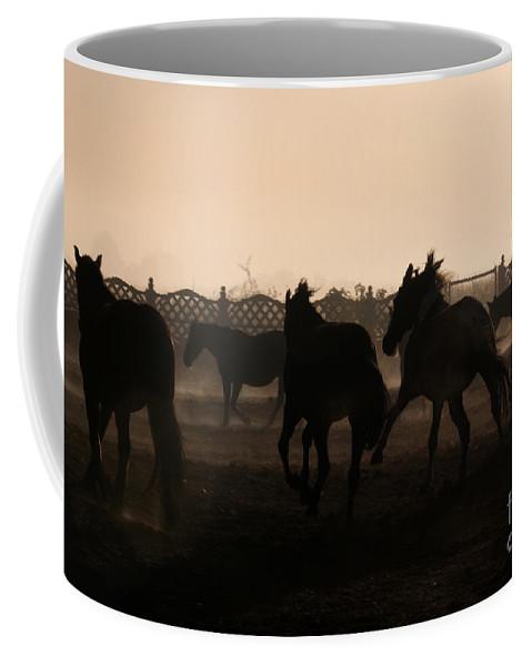 Horse Coffee Mug featuring the photograph Misty Morning by Angel Ciesniarska