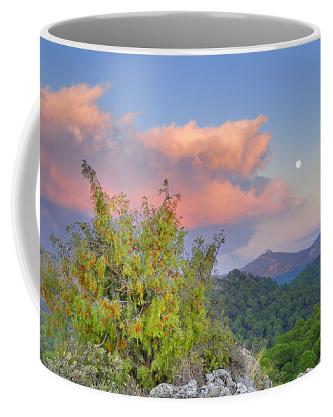 Sunset Coffee Mug featuring the photograph Moon by Guido Montanes Castillo