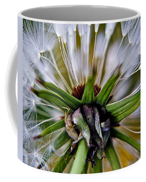 Dandelion Coffee Mug featuring the photograph Mystical Magical Dandelion by Frozen in Time Fine Art Photography