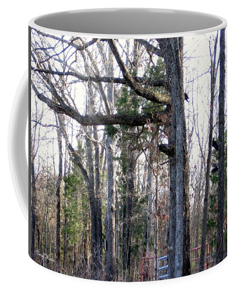 Trees Coffee Mug featuring the photograph North Texas Trees by Amy Hosp