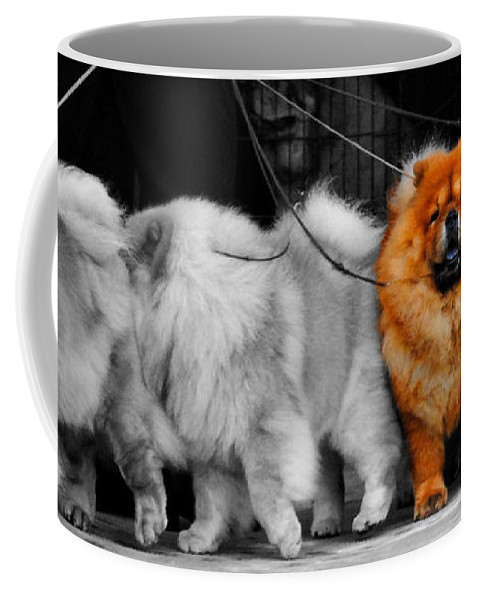 One Of A Kind Coffee Mug featuring the photograph One Of A Kind by Jai Johnson