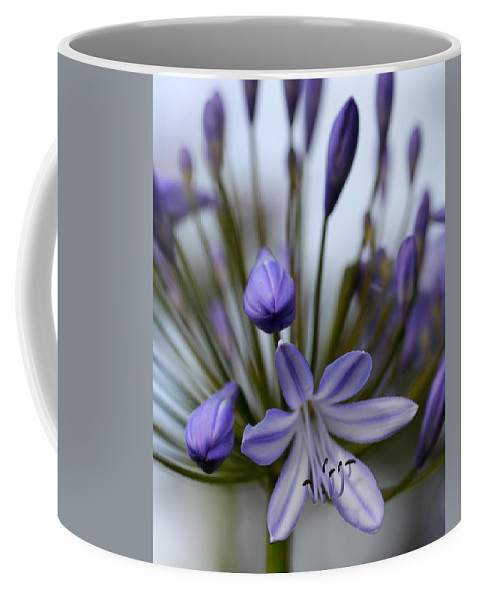 Flower Coffee Mug featuring the photograph Opening by Kevin Buffington