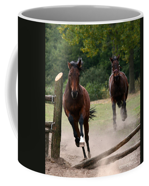 Horse Coffee Mug featuring the photograph Over The Fence by Angel Tarantella