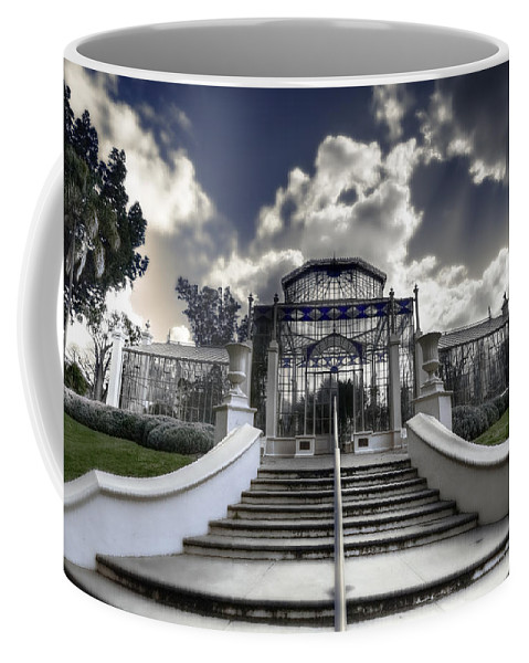 Palms Coffee Mug featuring the photograph Palm House by Wayne Sherriff