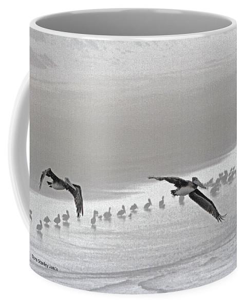 Pelicans Foggy Picnic Coffee Mug featuring the photograph Pelicans Foggy Picnic by Tom Janca