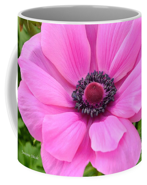 Pink Flower Coffee Mug featuring the photograph Pink Anemone by Jeannie Rhode
