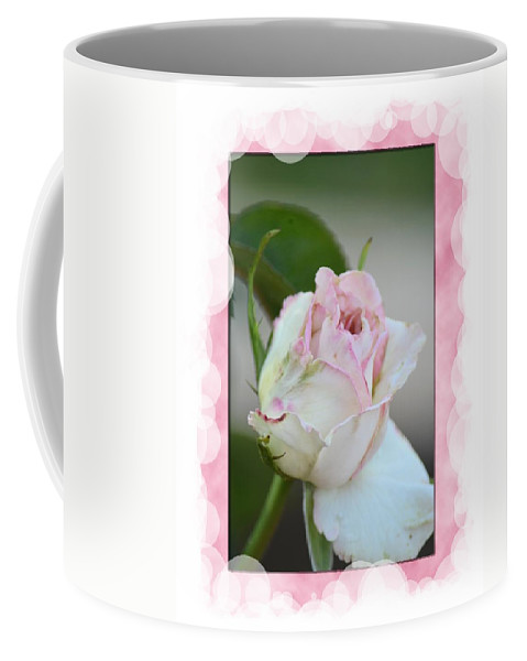 Pink Lady 2013 Coffee Mug featuring the photograph Pink Lady 2013 by Maria Urso