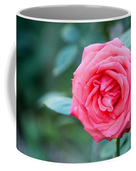 Flower Coffee Mug featuring the photograph Pretty In Pink by Linda Kerkau