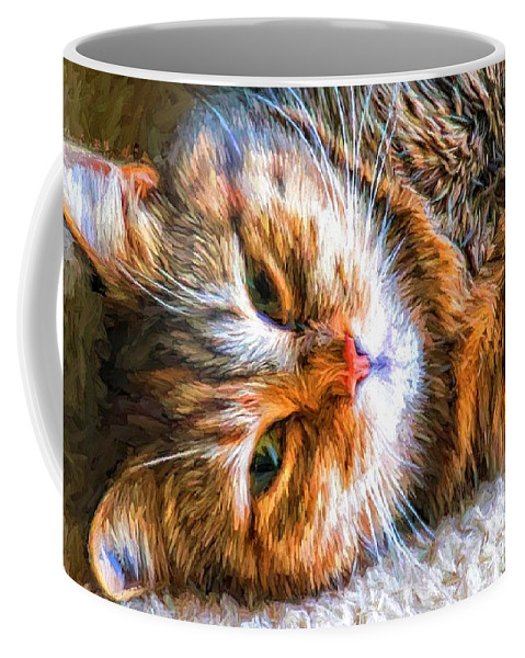Cat Coffee Mug featuring the photograph Pretty Kitty by Alice Gipson