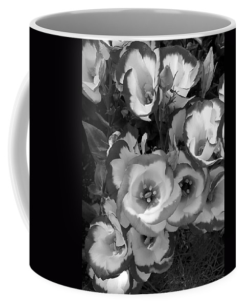 Black And White Coffee Mug featuring the photograph Pretty Petals by Denise Mazzocco