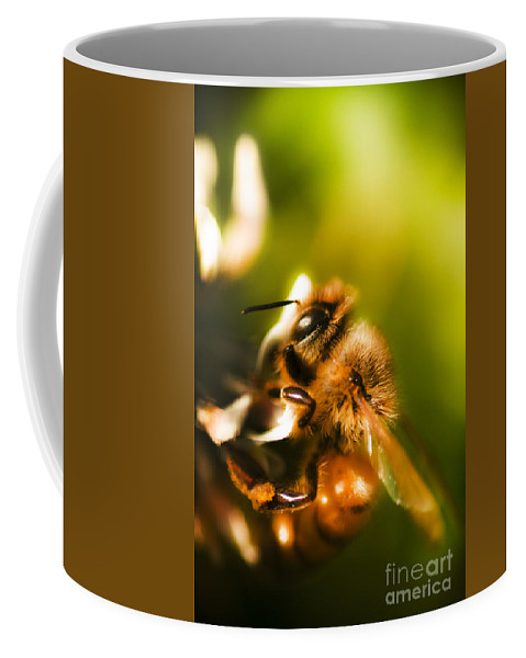 Closeup Coffee Mug featuring the photograph Process Of Pollination by Jorgo Photography - Wall Art Gallery