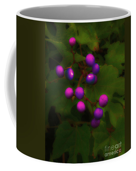 Berry Coffee Mug featuring the photograph Purple Berries by Mike Nellums