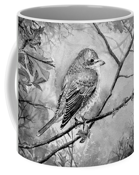 Aves Coffee Mug featuring the painting Red Backed Shrike by Andrew Read