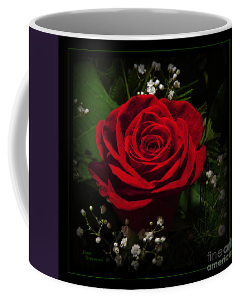 Rose Coffee Mug featuring the photograph Red Rose by John Stephens