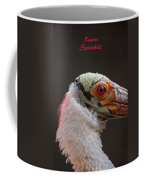 Roseate Coffee Mug featuring the photograph Roseate Spoonbill by Nick Gray