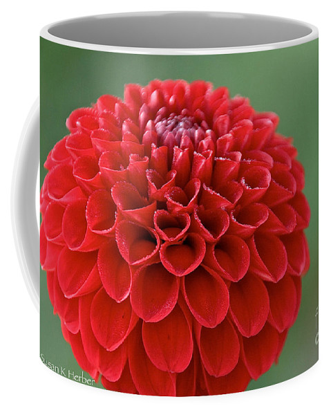Flower Coffee Mug featuring the photograph Ruby Dew by Susan Herber