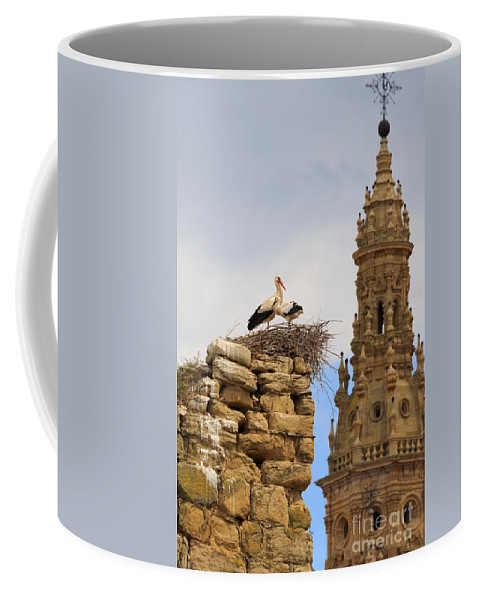 Storks Coffee Mug featuring the photograph Santo Domingo De La Calzada by Louise Heusinkveld