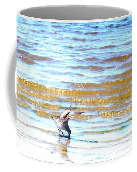 Feeding In The Waves Coffee Mug featuring the photograph Sea Bird by Robert Floyd