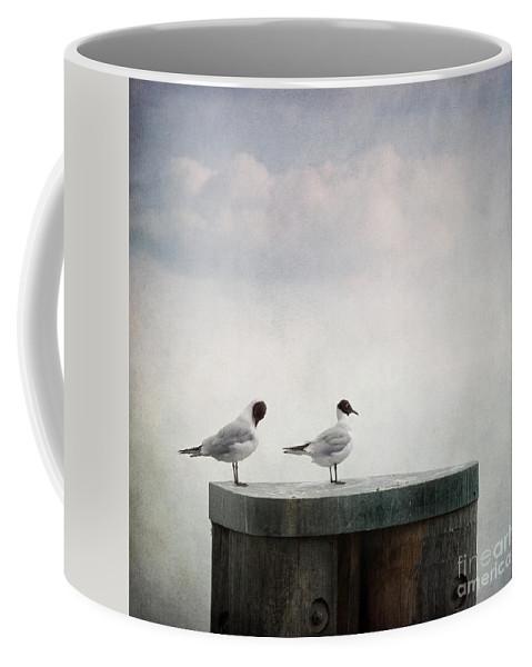 Bird Coffee Mug featuring the photograph Seagulls by Priska Wettstein