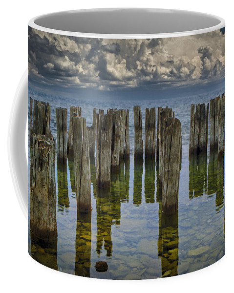 Art Coffee Mug featuring the photograph Shore Pilings At Fayette State Park by Randall Nyhof