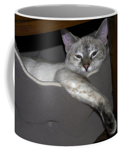 Nature Coffee Mug featuring the photograph Sigh by Skip Willits