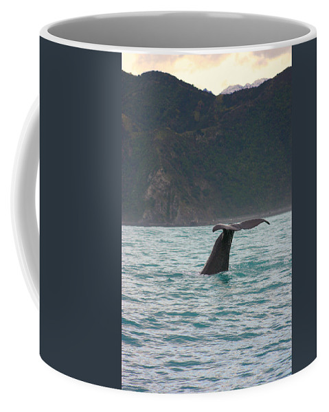 Whale Coffee Mug featuring the photograph Sperm Whale Diving by Amanda Stadther