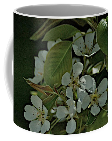 Pear Blossoms Coffee Mug featuring the photograph Spring by Joseph Yarbrough