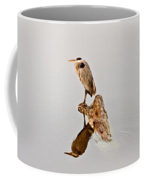 Great Blue Heron Coffee Mug featuring the photograph Still Hunter by Scott Pellegrin