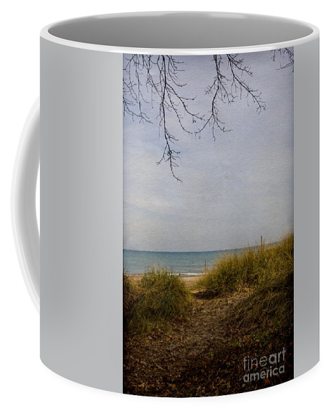 Leaves; Dead; Fall; Beach; Path; Sea; Lake; Ocean; Sand; Grasses; Alone; Seaside; Shore; Water; Outside; Outdoors; Empty; Day; Branches; Autumn Coffee Mug featuring the photograph Summers End by Margie Hurwich