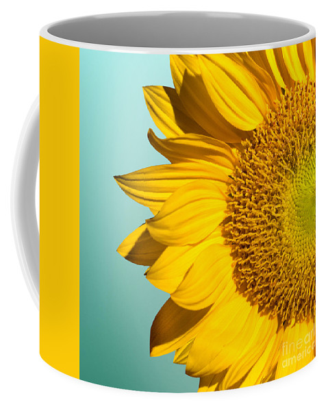 Sunflowers Coffee Mug featuring the photograph Sunflower by Mark Ashkenazi