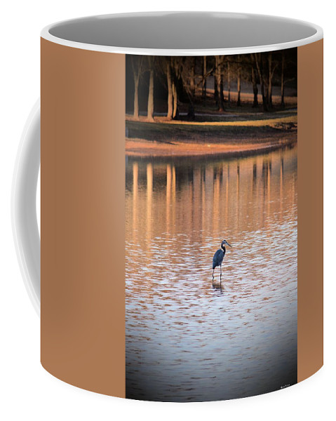 Sunset On The Lake Coffee Mug featuring the photograph Sunset On The Lake by Maria Urso
