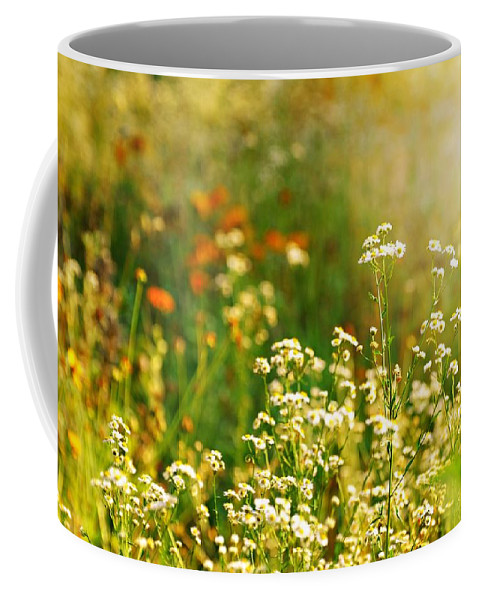 Landscape Coffee Mug featuring the photograph Summer Love by Diana Angstadt