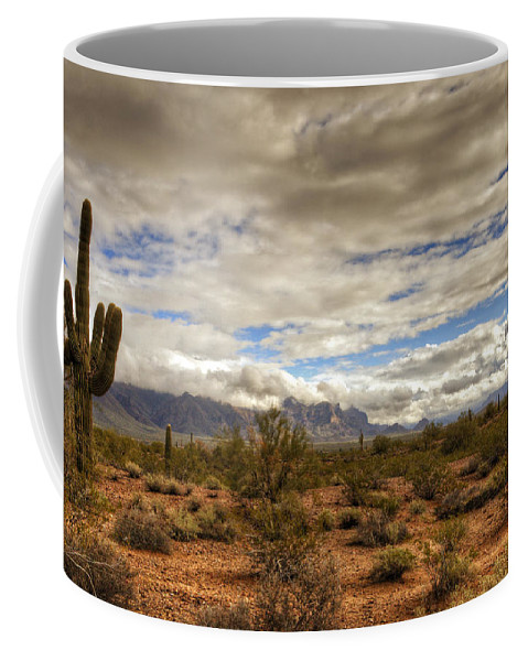 Arizona Coffee Mug featuring the photograph The Desert Southwest by Saija Lehtonen