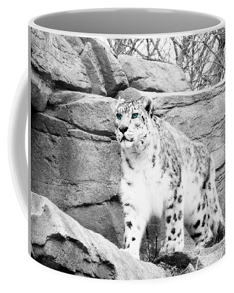 Snow Leopard Coffee Mug featuring the photograph The Eyes Have It by Debbie Nobile