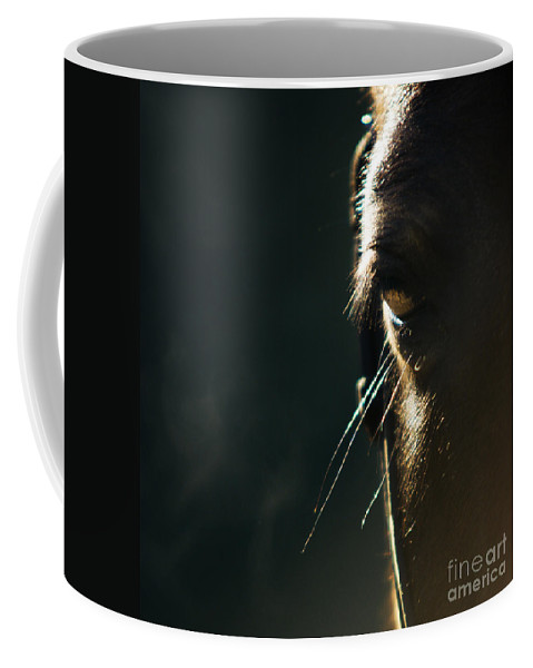 Horse Coffee Mug featuring the photograph the Look by Angel Ciesniarska