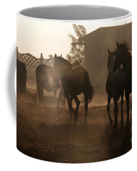 Misty Morning Coffee Mug featuring the photograph The Misty Morning by Angel Tarantella