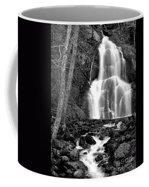 Waterfall Coffee Mug featuring the photograph Moss Glen Falls by Mike Nellums