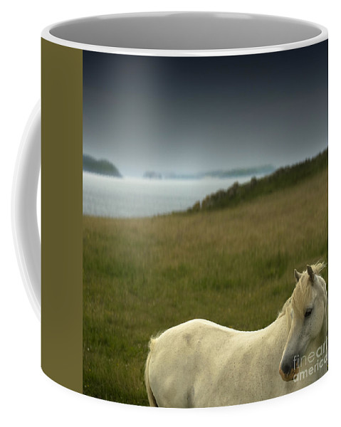 Welsh Pony Coffee Mug featuring the photograph The Welsh Pony by Angel Ciesniarska