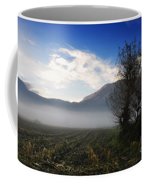 Trees Coffee Mug featuring the photograph Tree With Fog by Mats Silvan