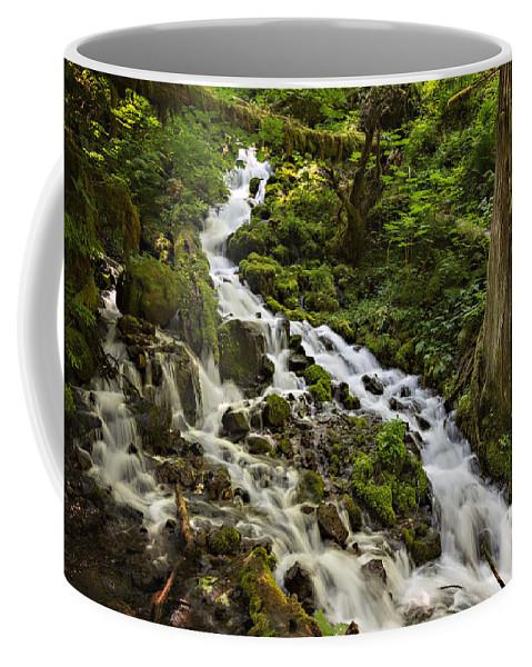 Wahkeena Creek Coffee Mug featuring the photograph Wahkeena Creek by Mary Jo Allen